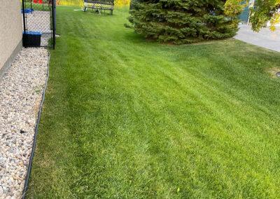 Winnipeg companies who do landscaping